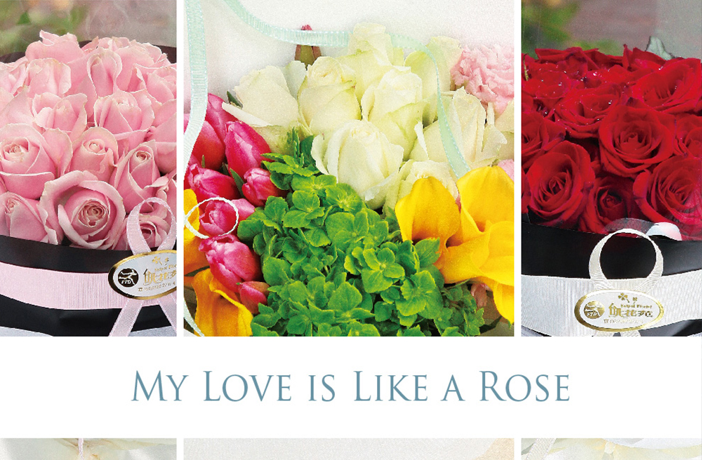 My Love is Like A Rose