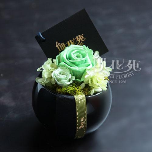 蘋果綠永生花 TF9323