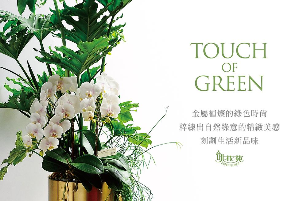 金屬綠色時尚1