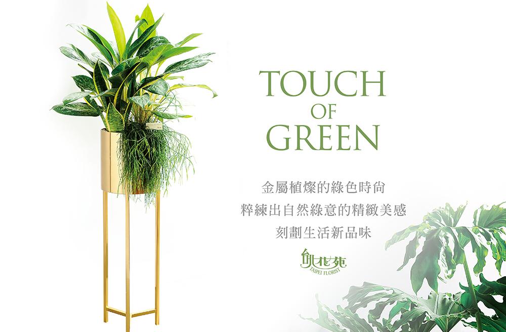 金屬綠色時尚2